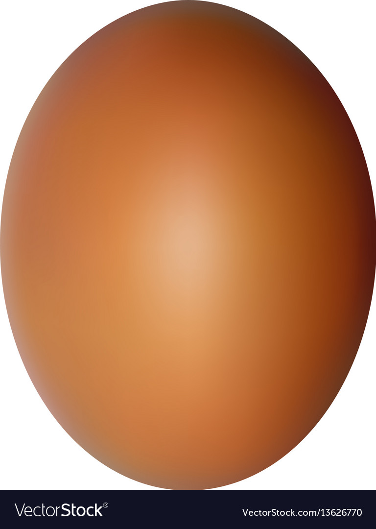 Egg on a white background natural ecological