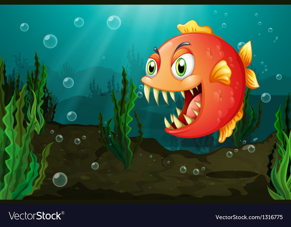 A piranha under the sea with seaweeds