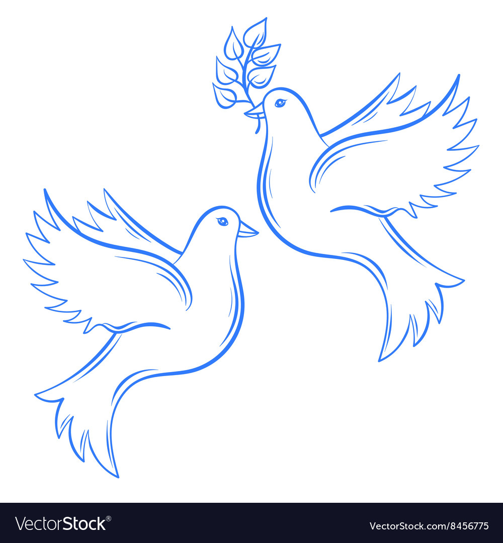 Doves Hand drawn Dove of Peace vector image
