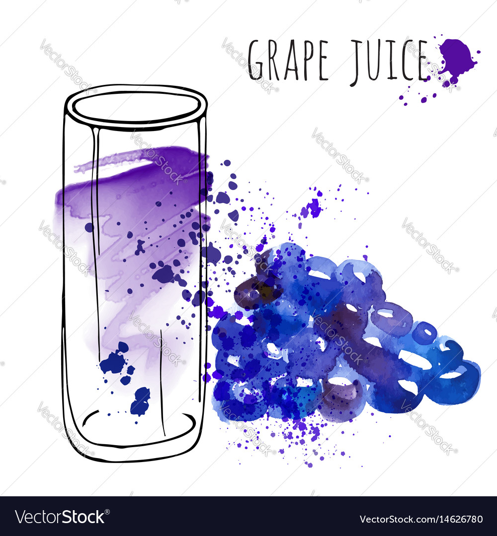 Grape juice in glass and grapevine