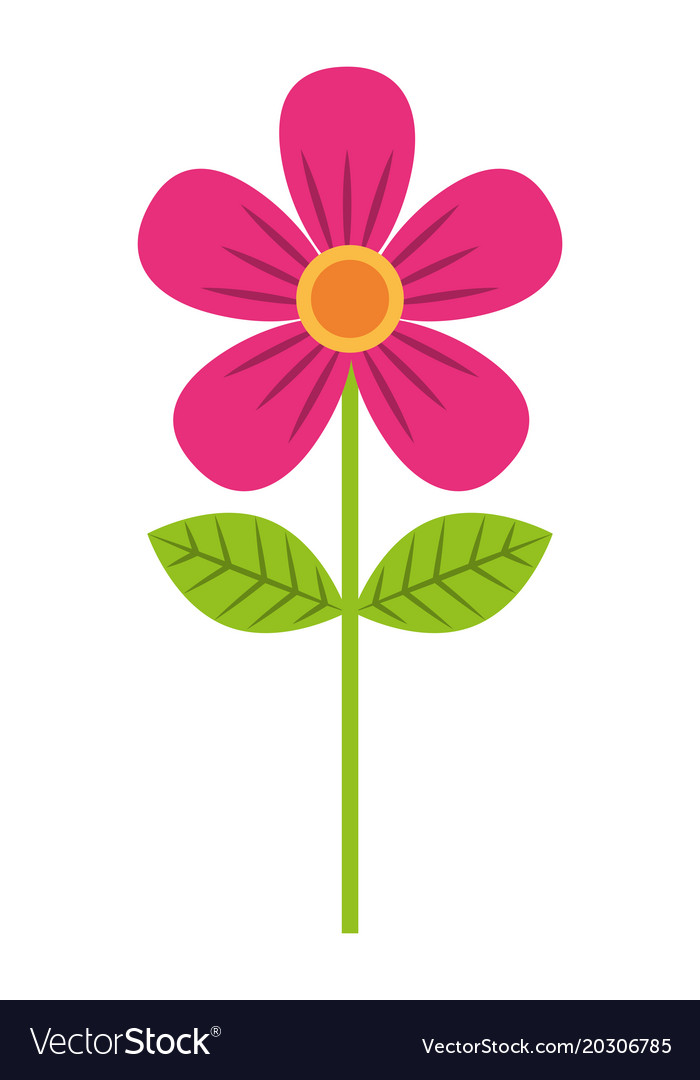 Pink flower leave decoration natural icon vector image mightylinksfo