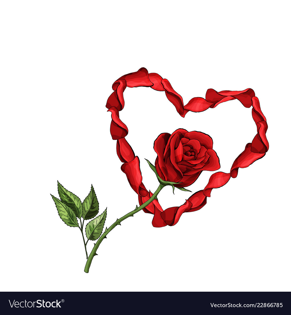 Valentine day love postcard template petals heart