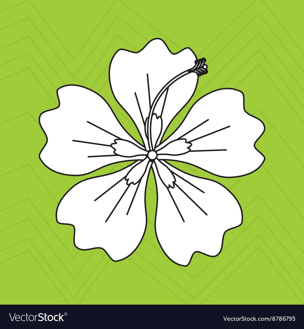 Hawaiian flower design royalty free vector image hawaiian flower design vector image izmirmasajfo