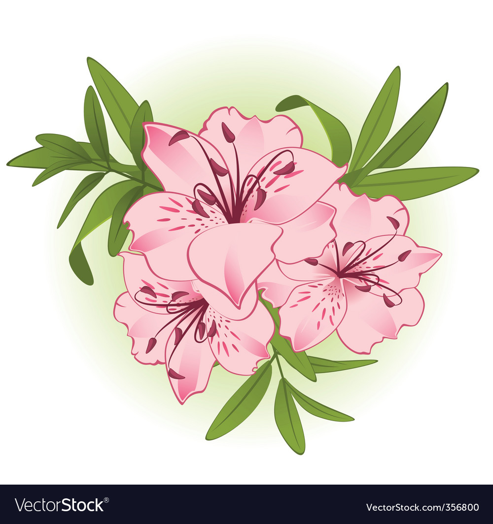 Bouquet Of Flowers Royalty Free Vector Image Vectorstock