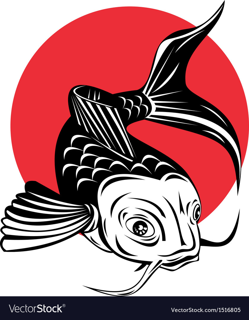 Koi Carp Fish Jumping vector image