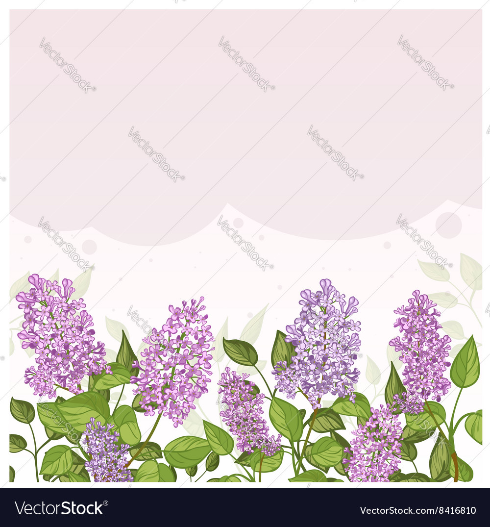 Floral card with lilacs on lilac background