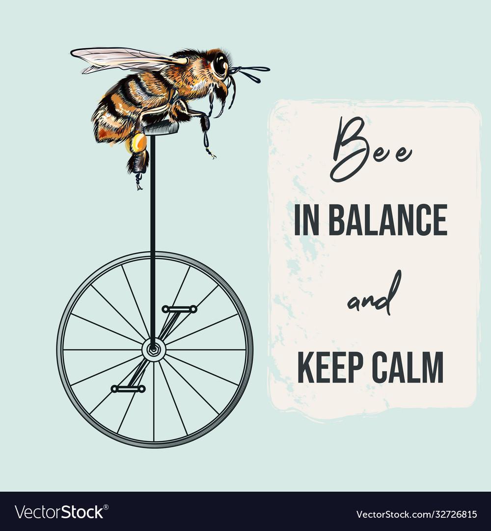 Fashion apparel print bee on bicycle