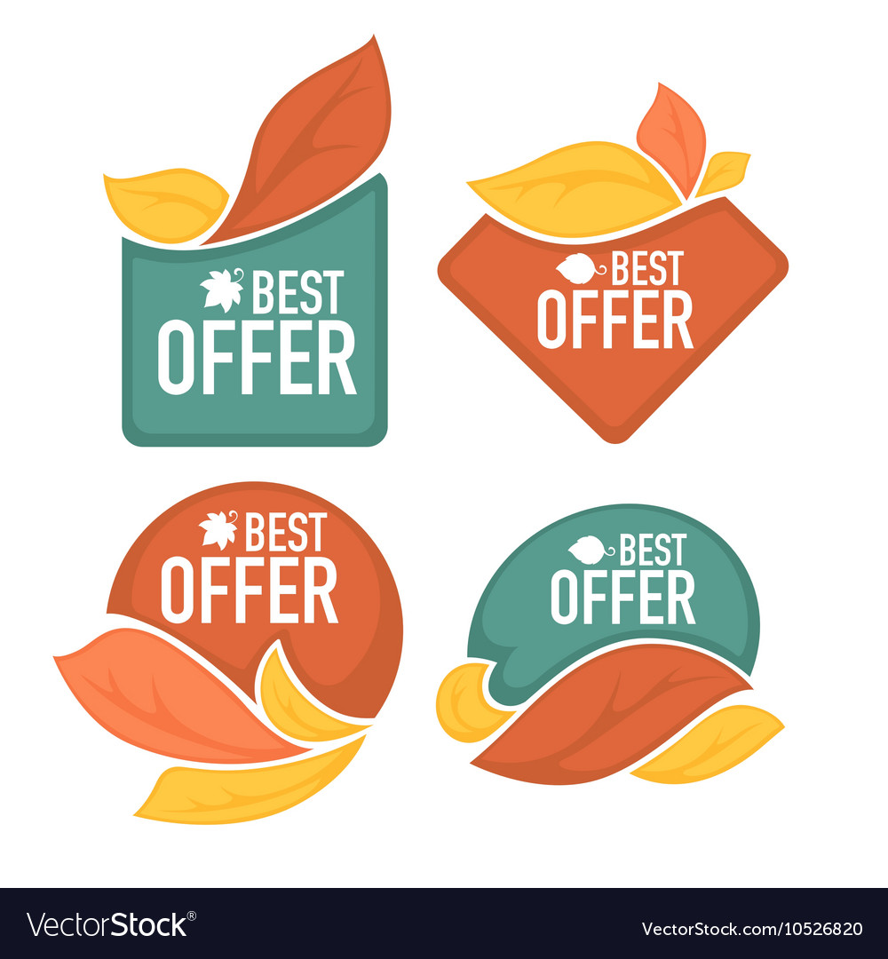 Autumn offer vector image