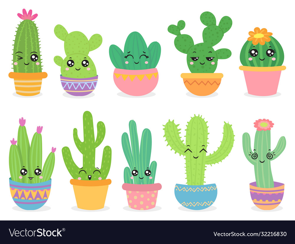 Cartoon cactus cute succulent or cacti plant