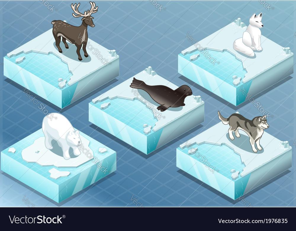 Isometric Arctic Animals on Ice