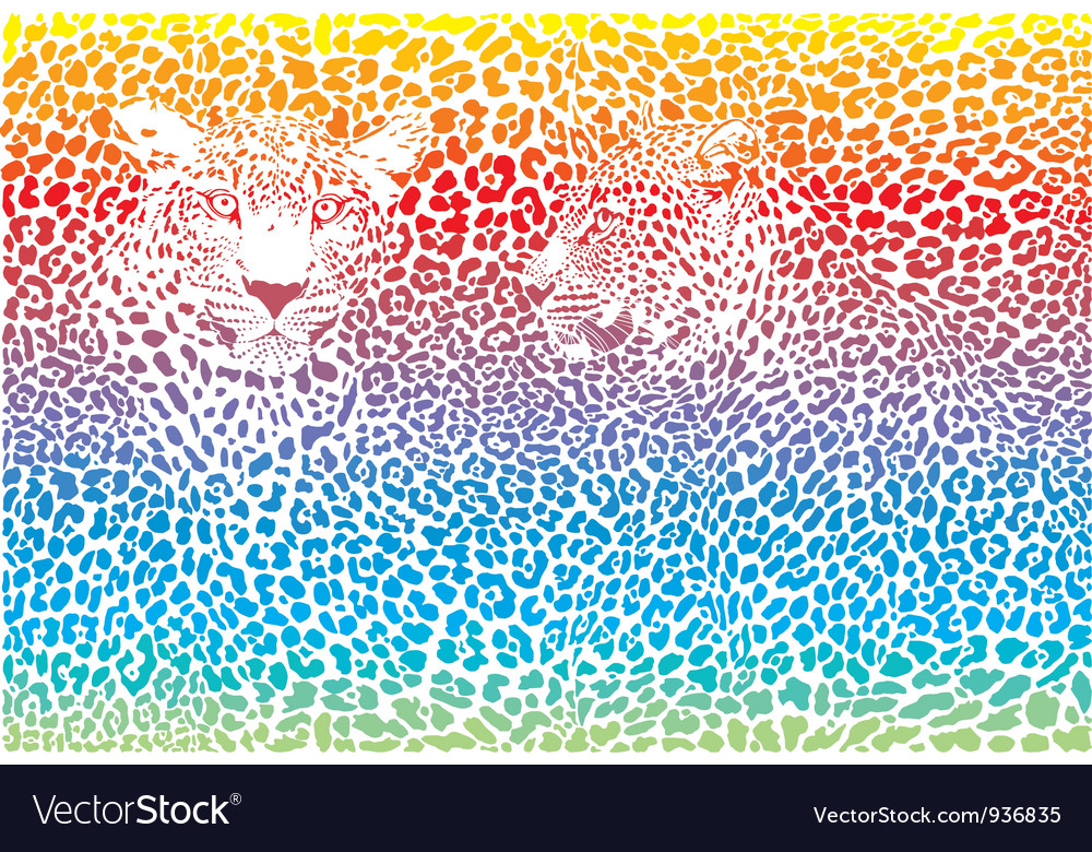 Leopard Rainbow Pattern Background Royalty Free Vector Image Impressive Rainbow Pattern