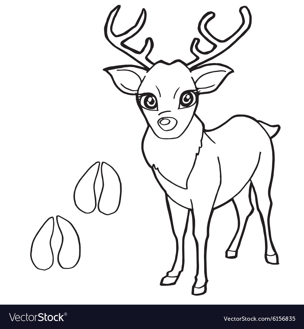 Paw print with Deer Coloring Pages