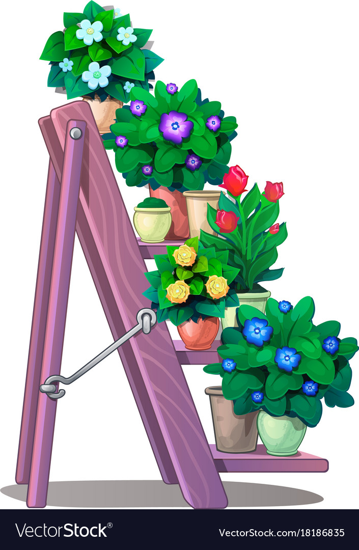 Set of decorative plants in pots on stairs shelves