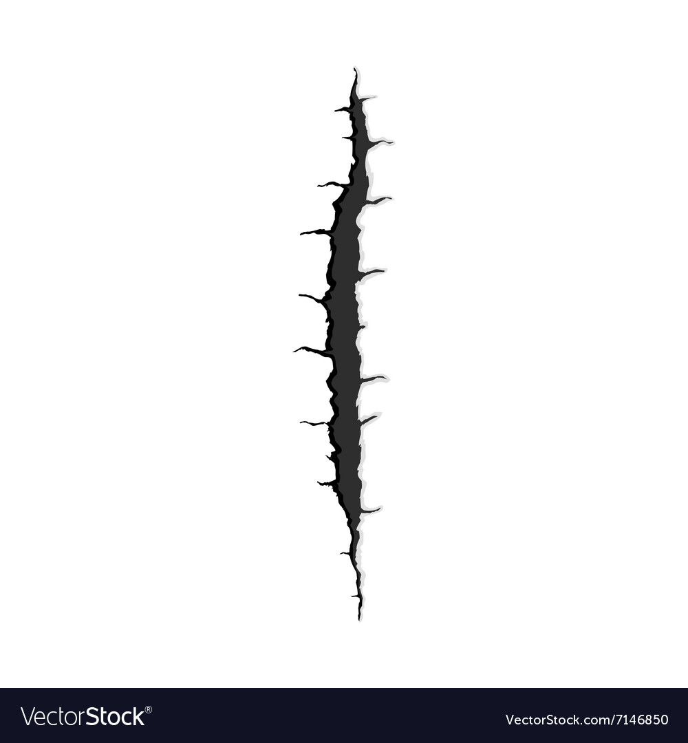 One vertical trace of monster claw vector image