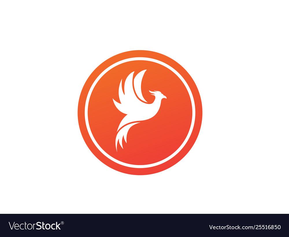 Phoenix flying bird and eagle open wings logo