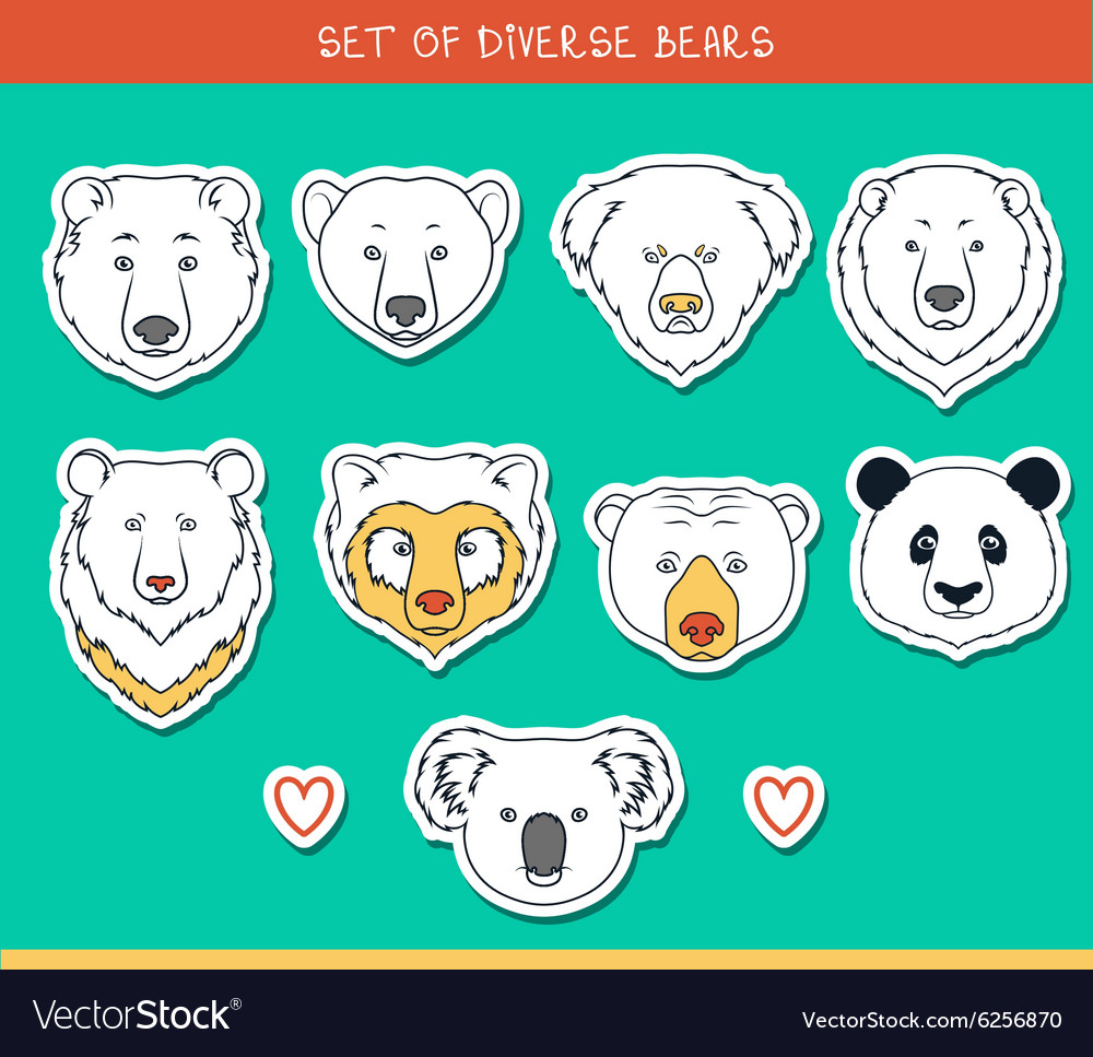 Set 9 muzzles stickers bears handmade linear style