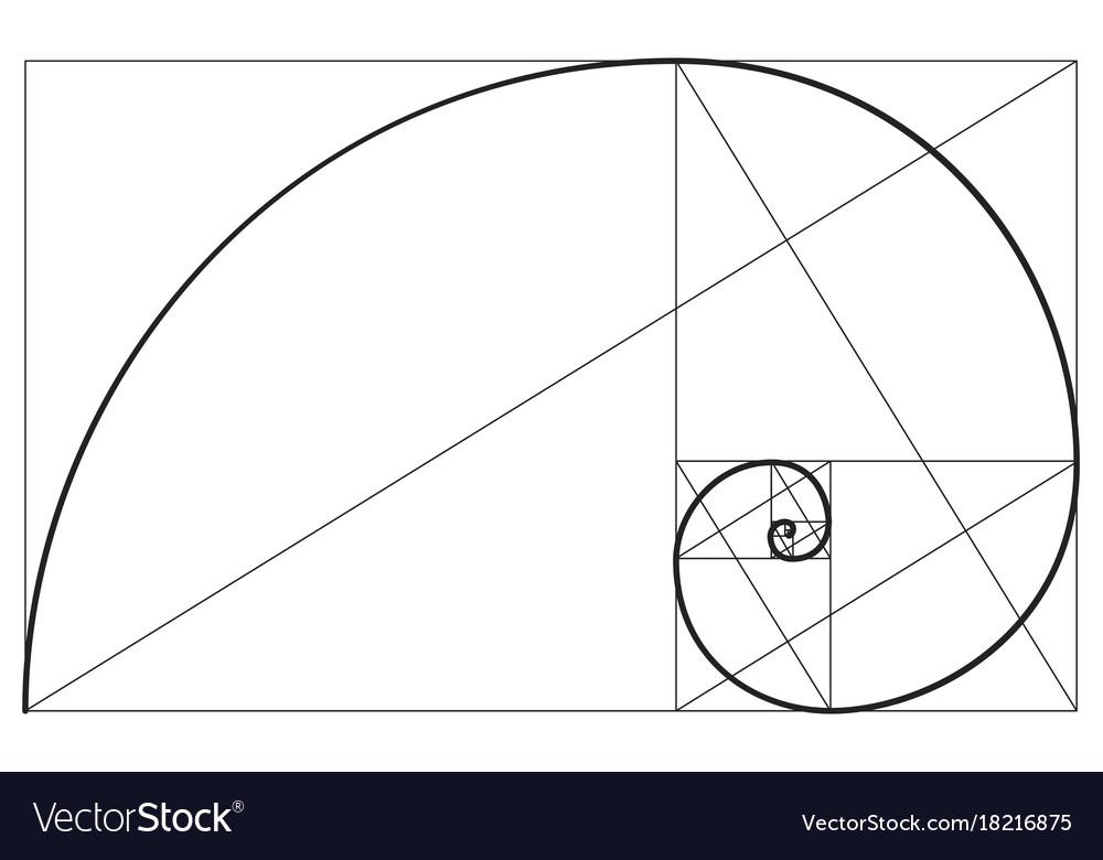 golden ratio spiral symbol royalty free vector image rh vectorstock com golden ratio logo vector golden ratio vector illustrator