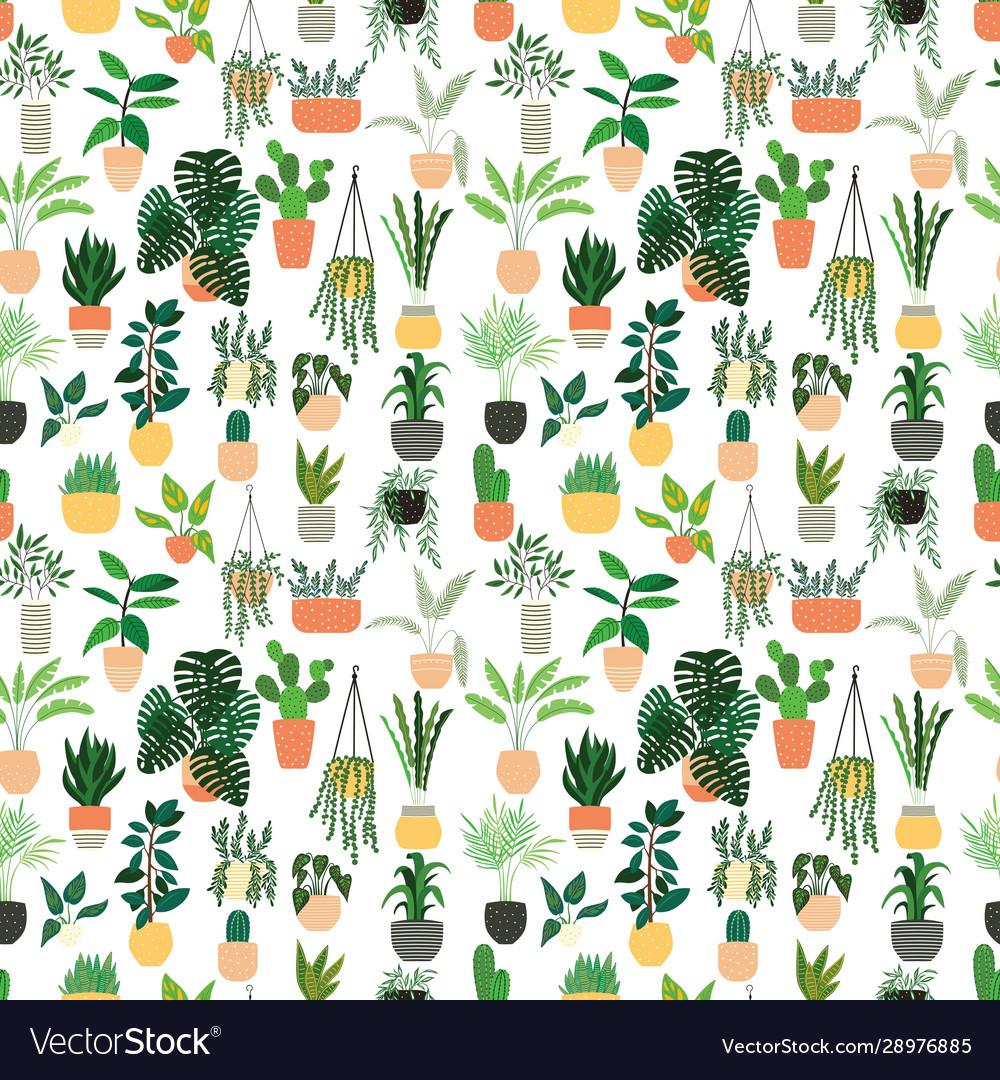 Seamless pattern houseplants hand drawn