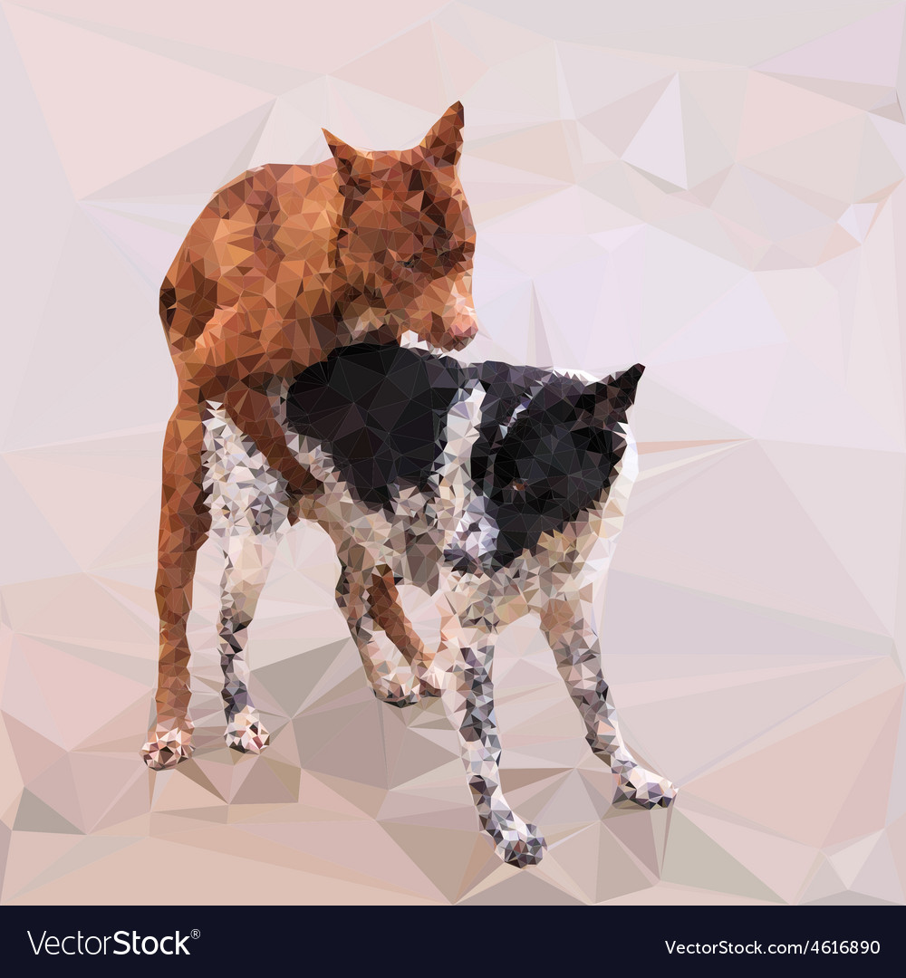 Low poly of male dog cover female dog