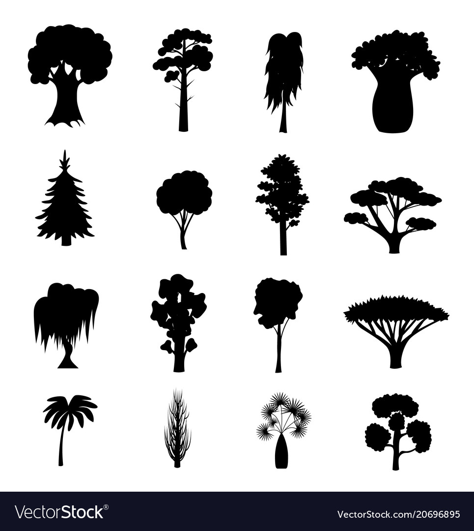 Silhouette black different tree types icons set