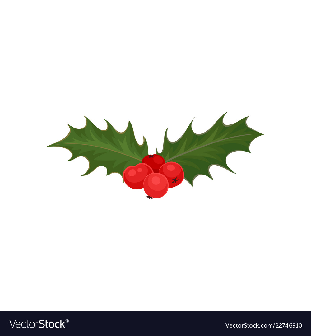 Christmas Leaves.Christmas Holly With Red Berries And Green Leaves