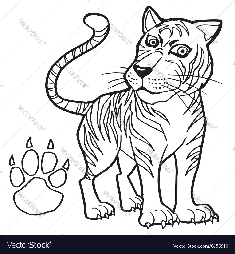 Tiger with paw print Coloring Page