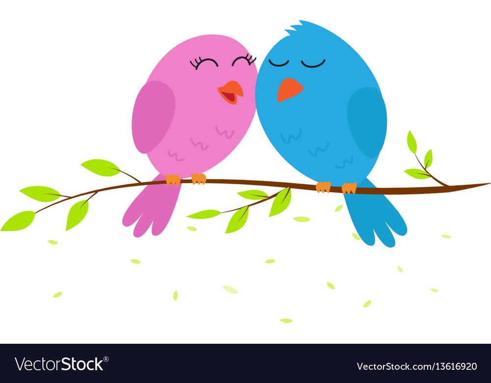 Love bird on a branch vector image