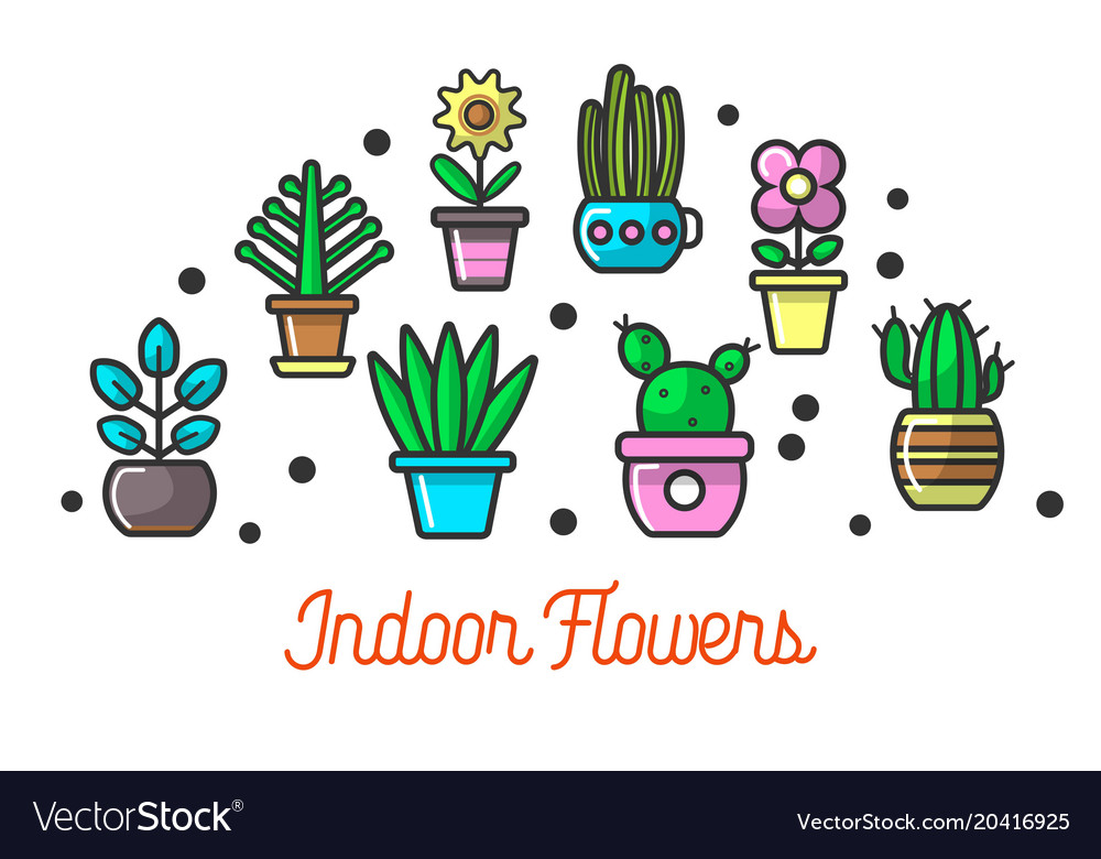 Indoor flowers in colorful pots set on poster
