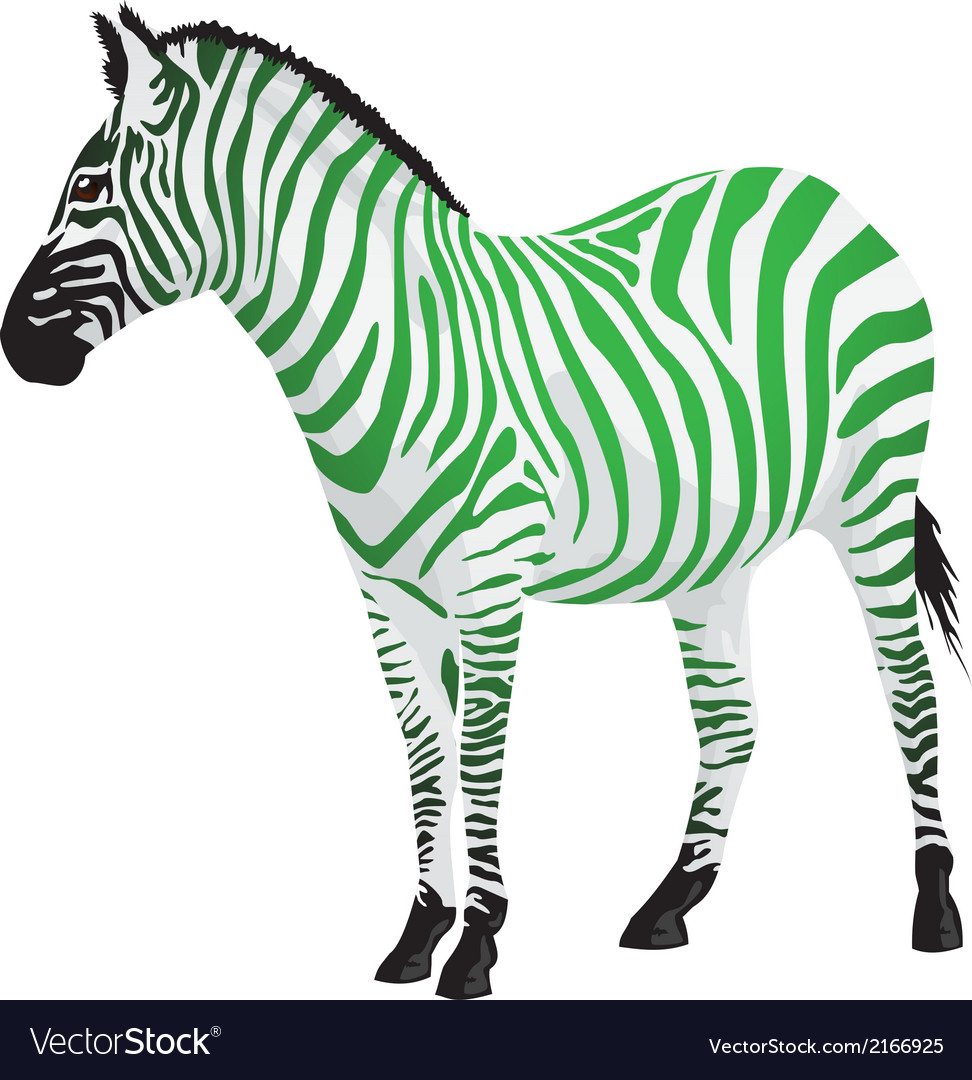 Zebra with strips of green color
