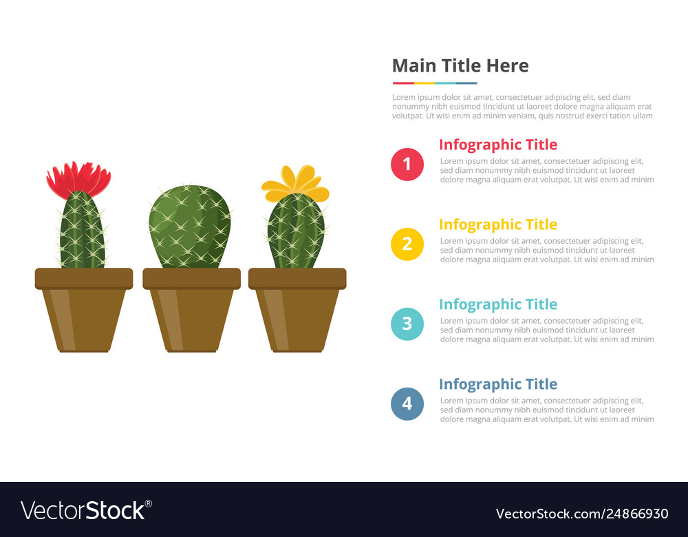 Cactus infographics template with 4 points of