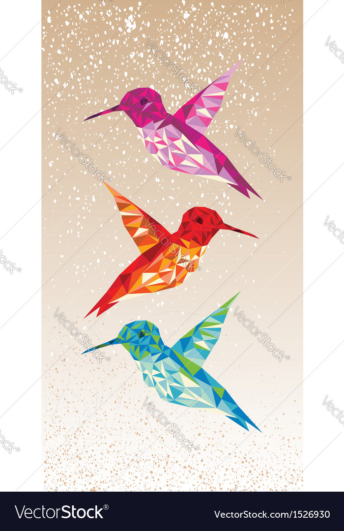 Colorful humming birds