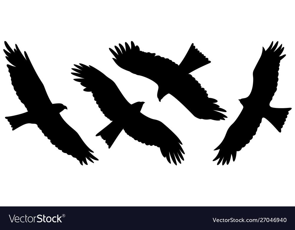 Eagle silhouettes 002