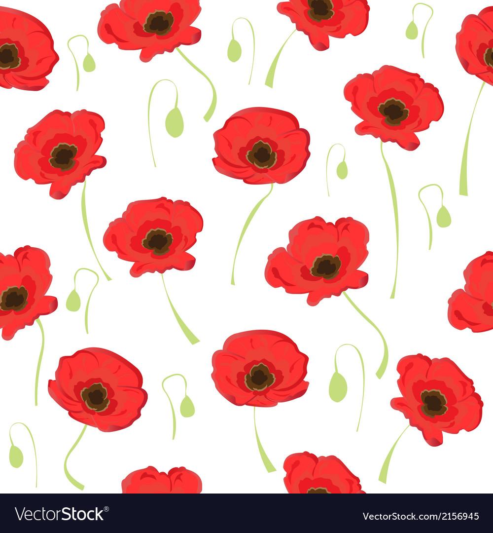 Poppy Flowers On White Background Vector Image On Vectorstock