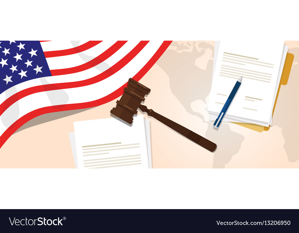 Usa united states of america law constitution vector image