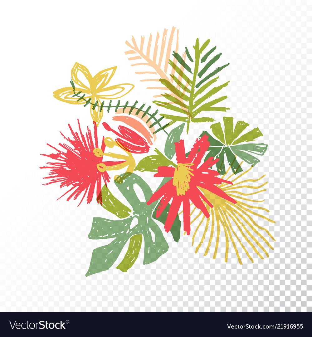 Tropical Flower Bouquet Translucent Background Vector Image