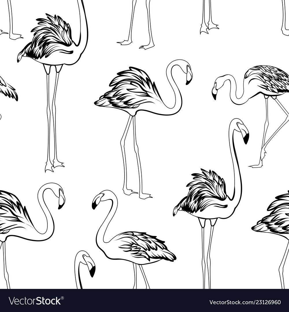 Flamingos black and white seamless pattern exotic