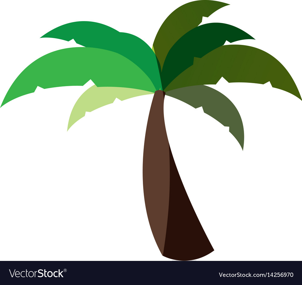 White background with palm tree and middle shadow