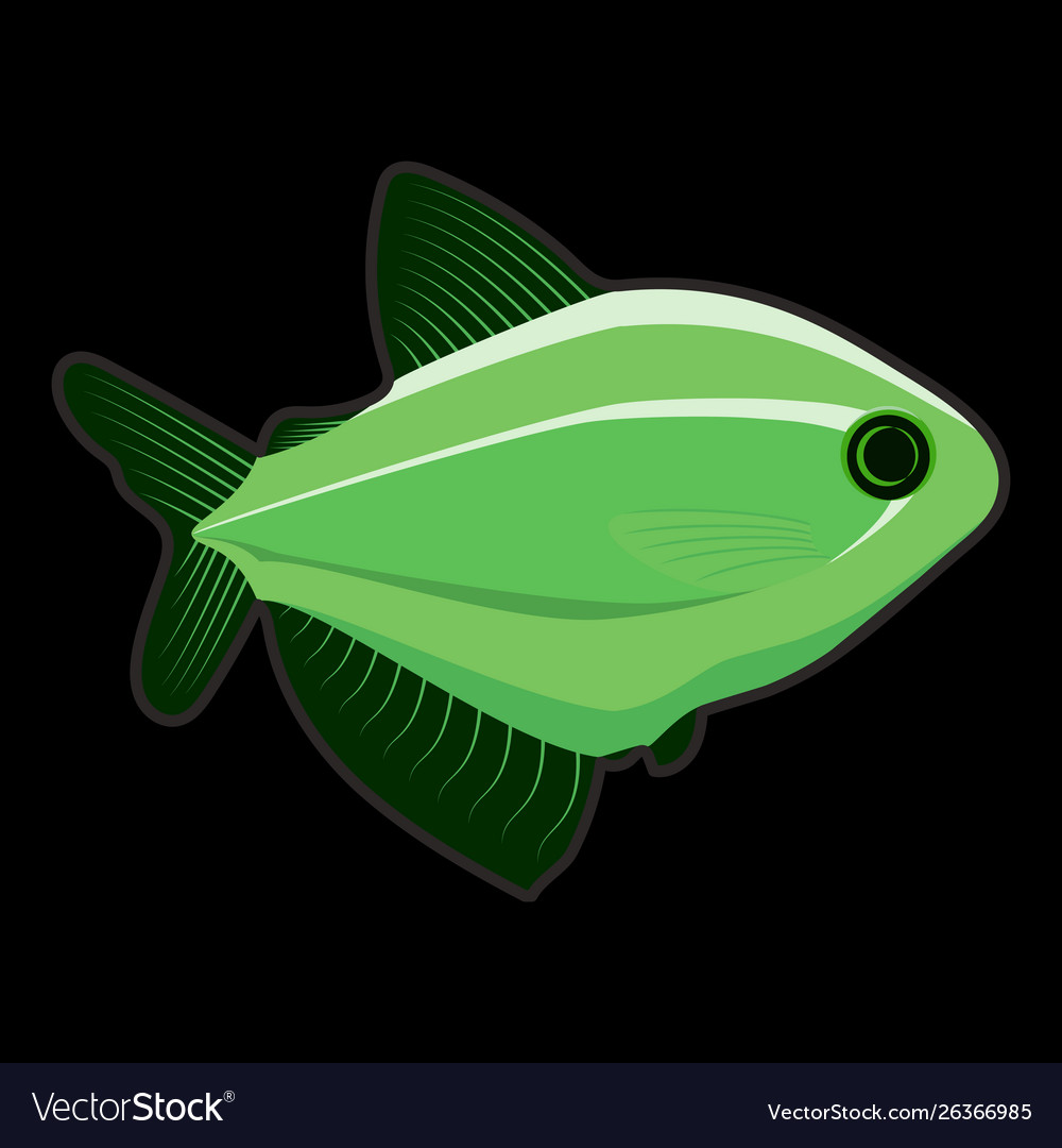 Green fish on black background