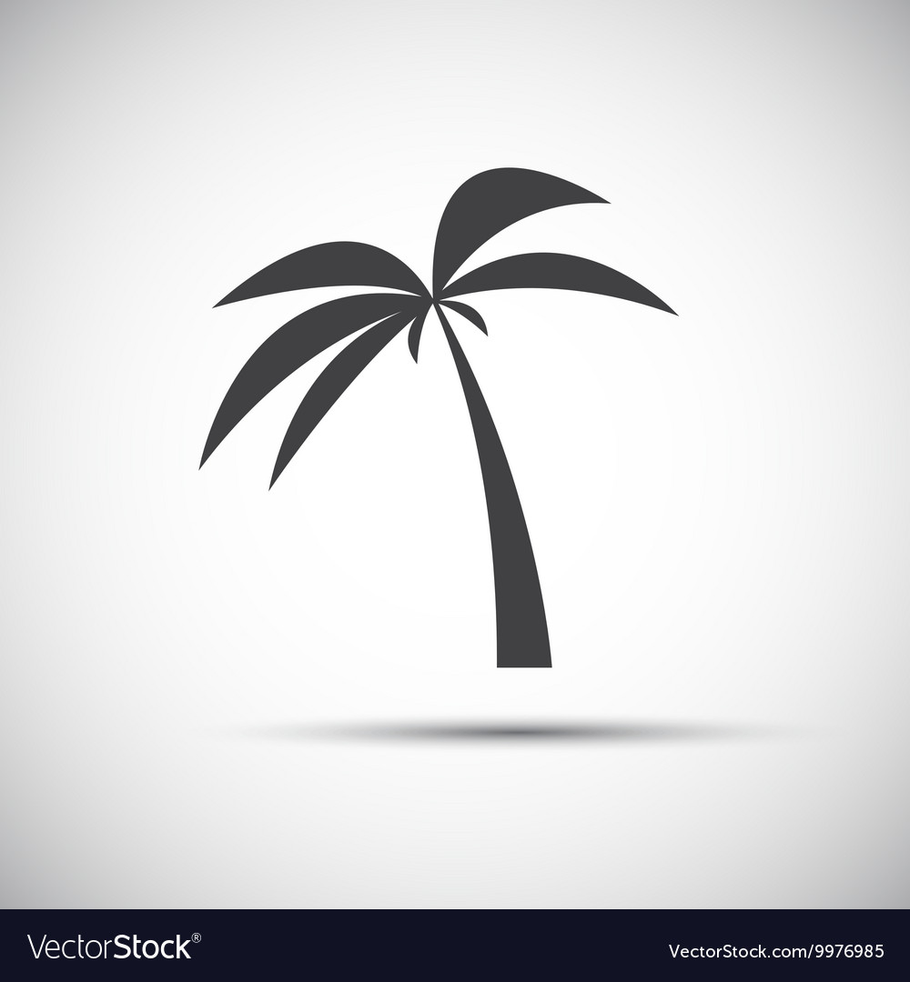 Simple of a palm tree