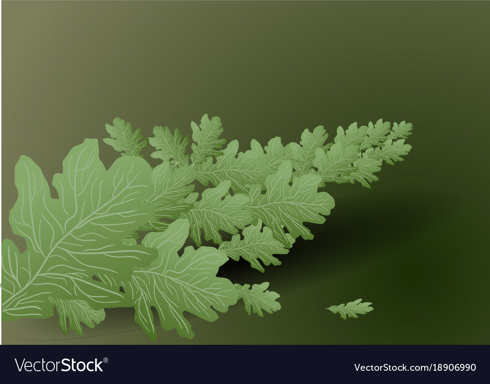 Background with branch vector image