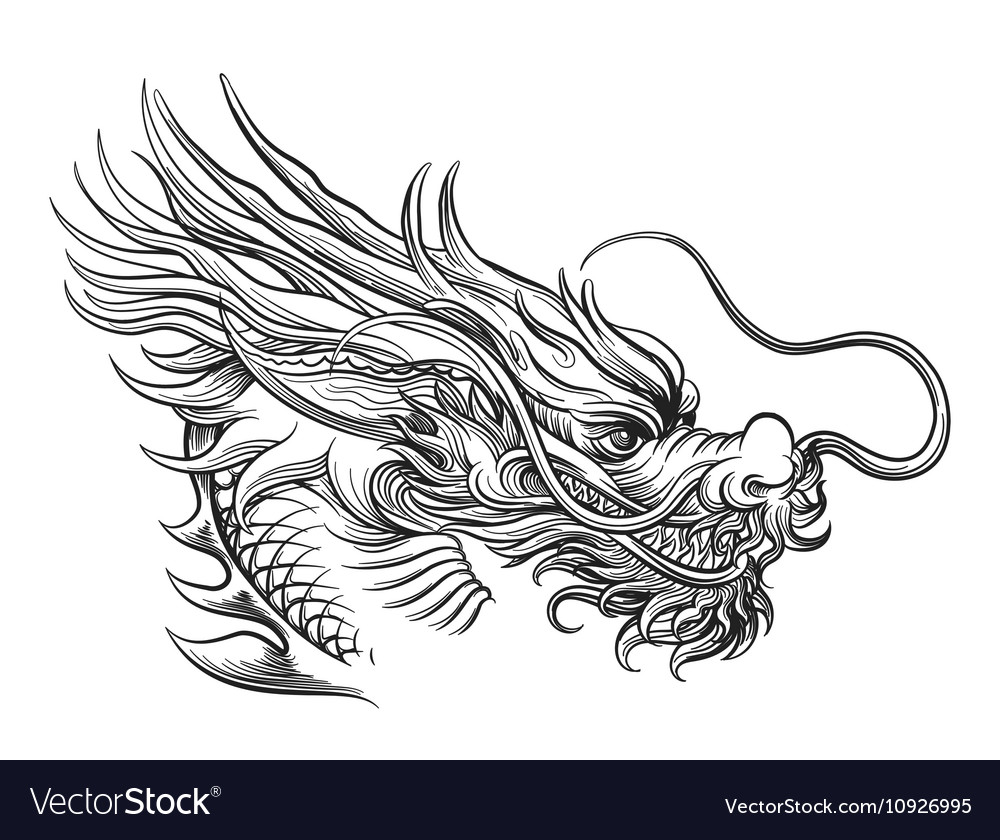 hand drawn chineese dragon head royalty free vector image