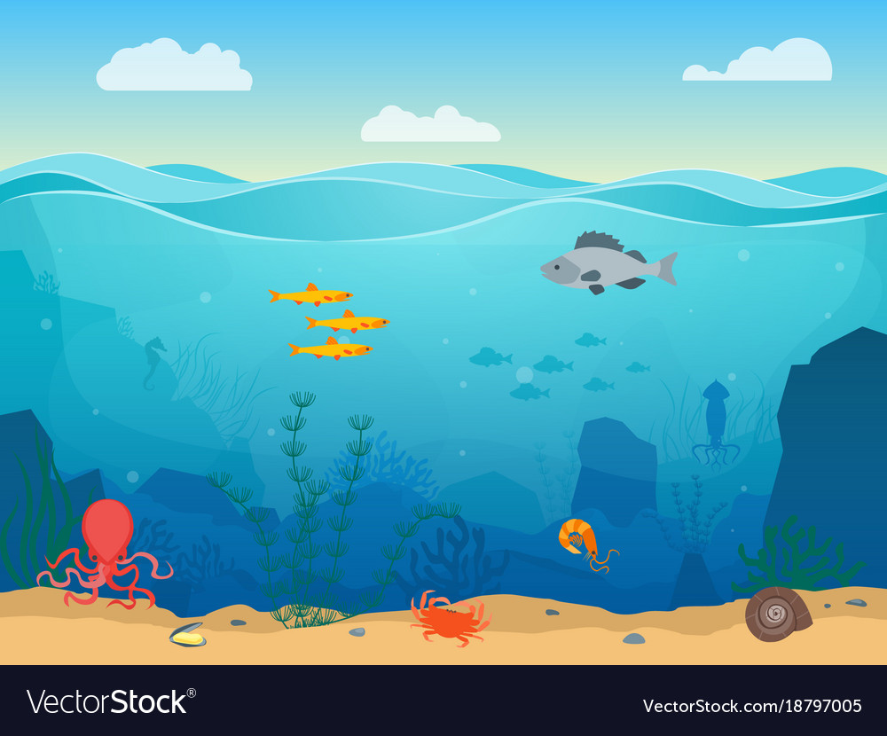 cartoon sea underwater scene color background vector image