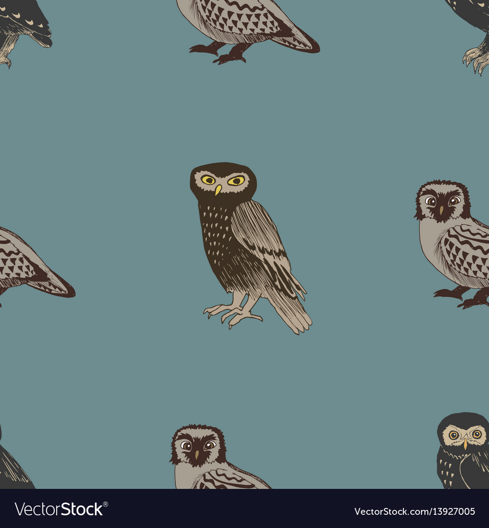 Hand drawn seamless pattern with owls