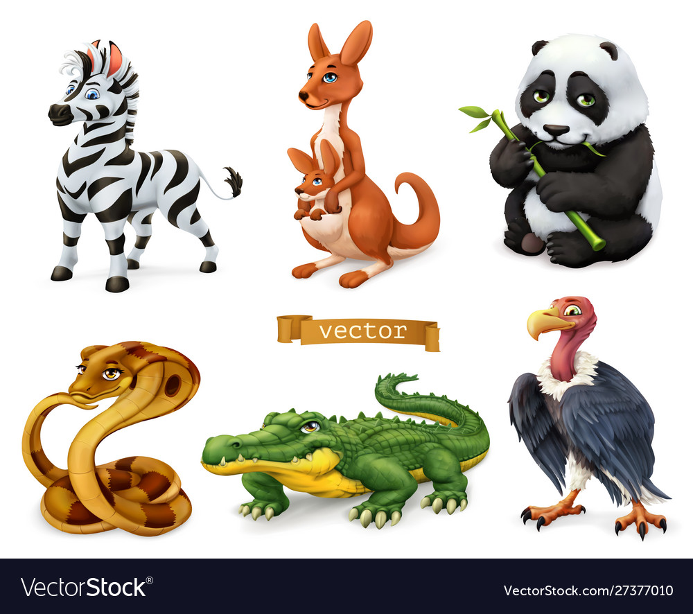Funny animals zebra kangaroo panda bear cobra