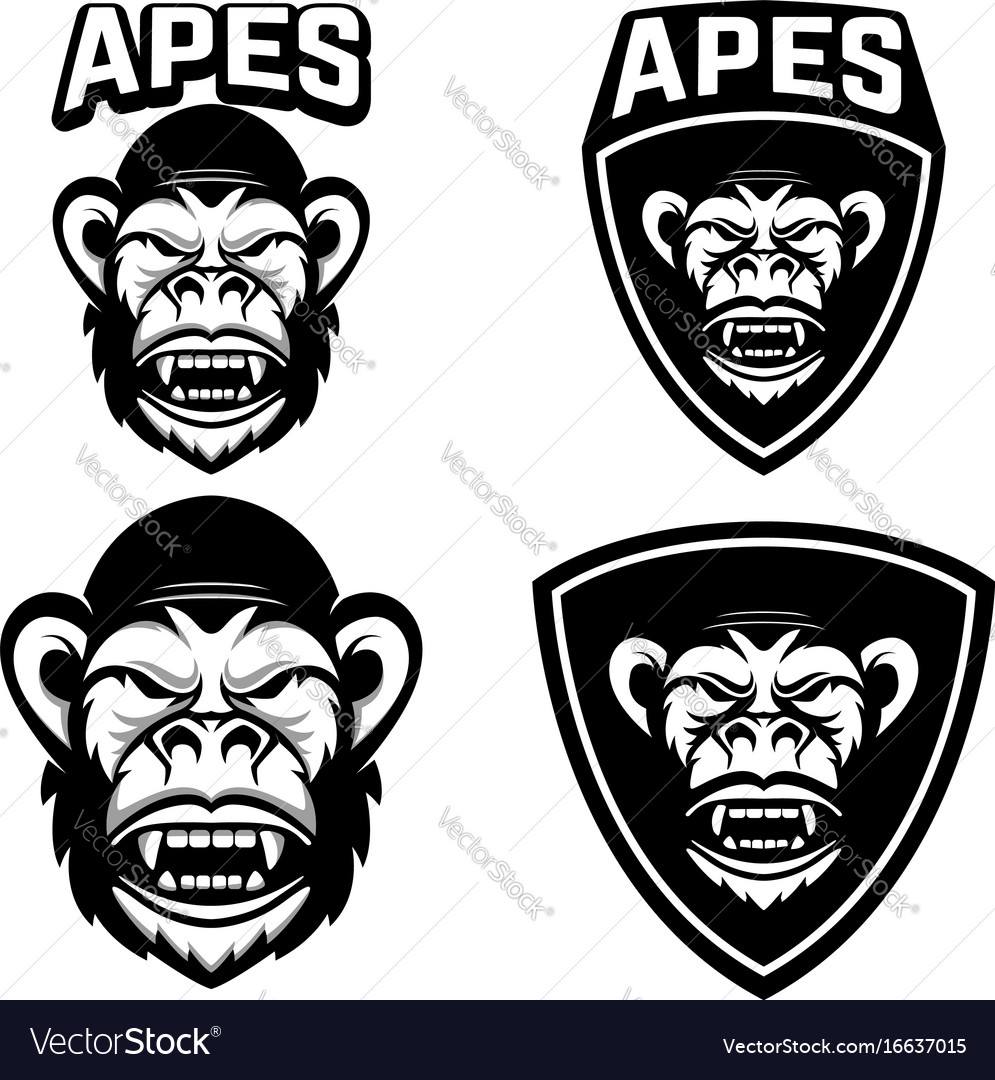 Apes set of emblems templates with monkey head