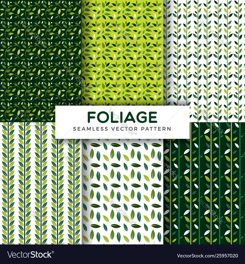 Foliage leaf seamless pattern