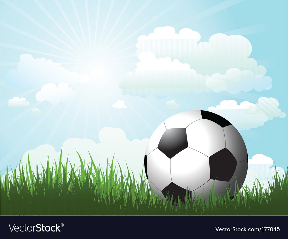 Football in grass vector image