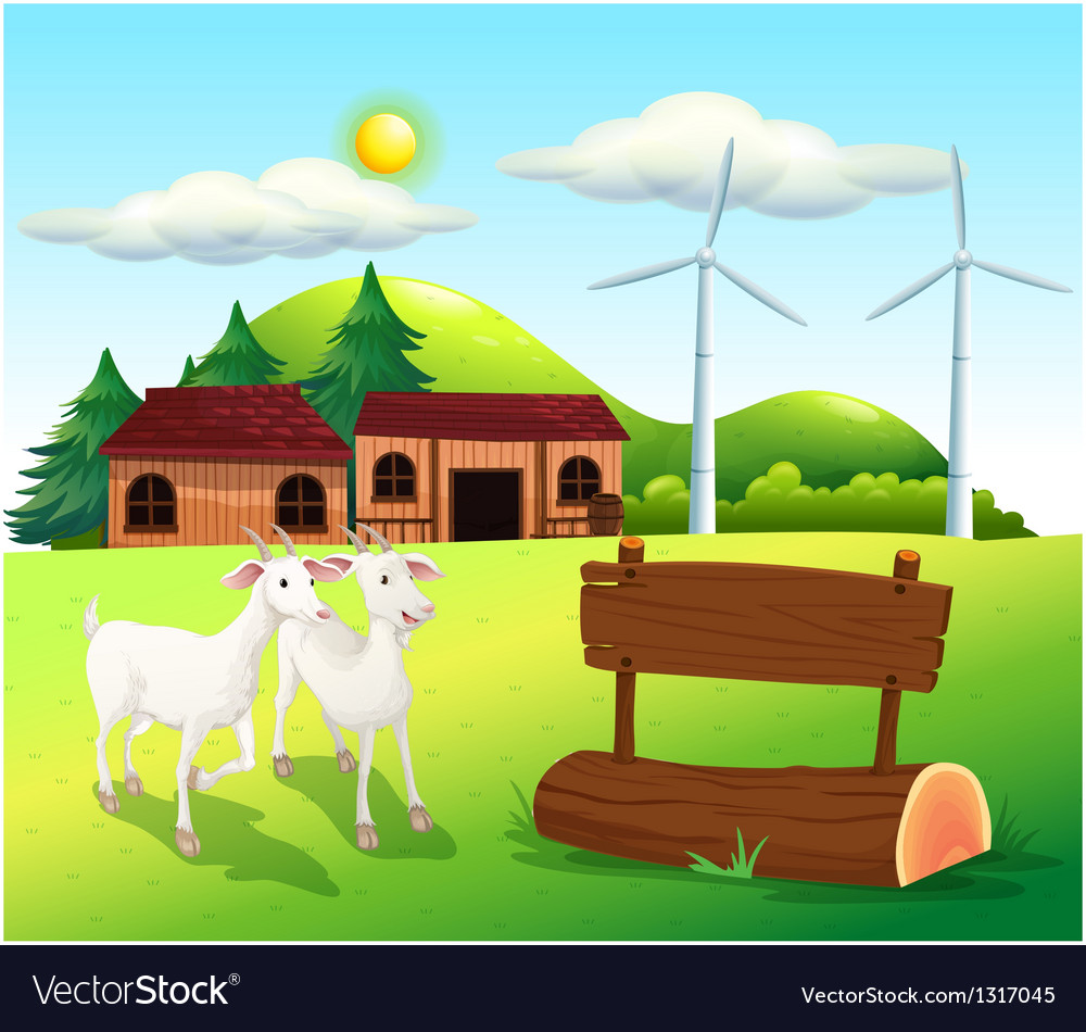 Two goats near the wooden signboards