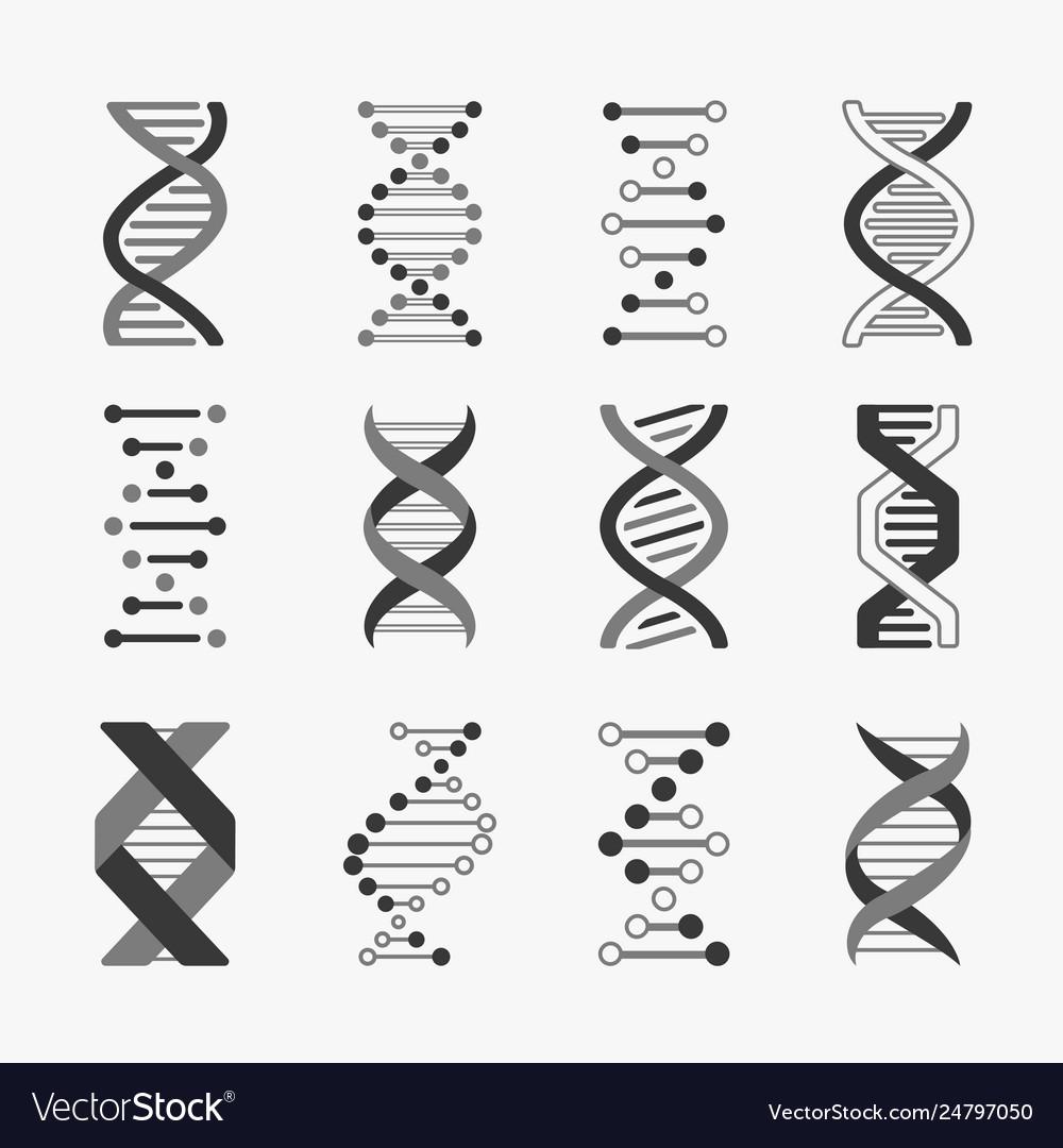 Dna helix cell gene structure bioinformatics