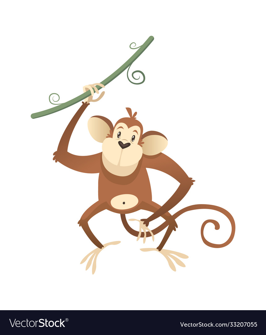 Jungle wild monkey colorful safari circus or